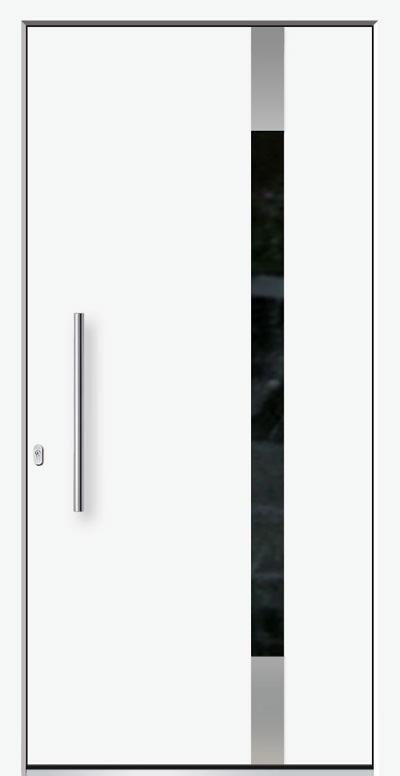 Alu-Haustür Modell NaheSerie Pure