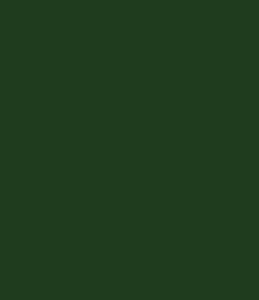 Aluhaustueren-Farbe RAL 6009 Tannengrün Feinstruktur - www.aluminium-haustueren-direkt.de